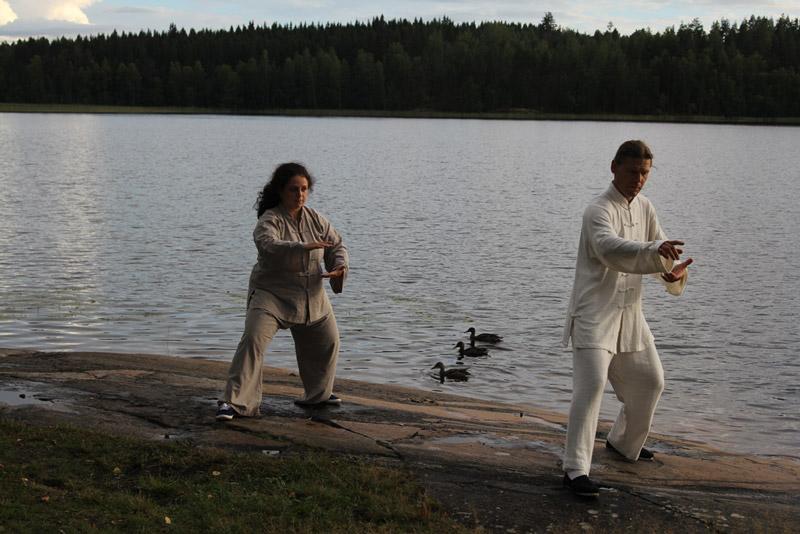 Семинар в Финляндии, в Савонлине, 2013
